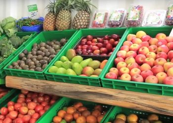 grocery store business in Kenya